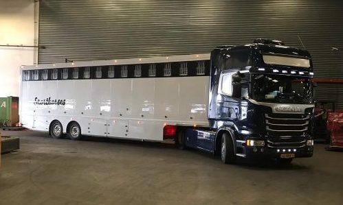 Horse truck export paard